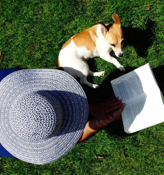 Person læser bog med hund